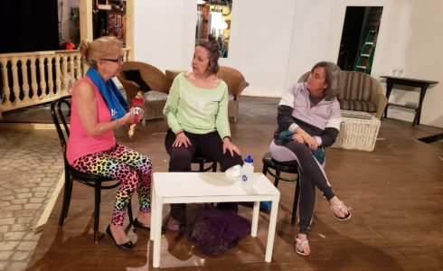 Cast of The Savannah Sipping Society